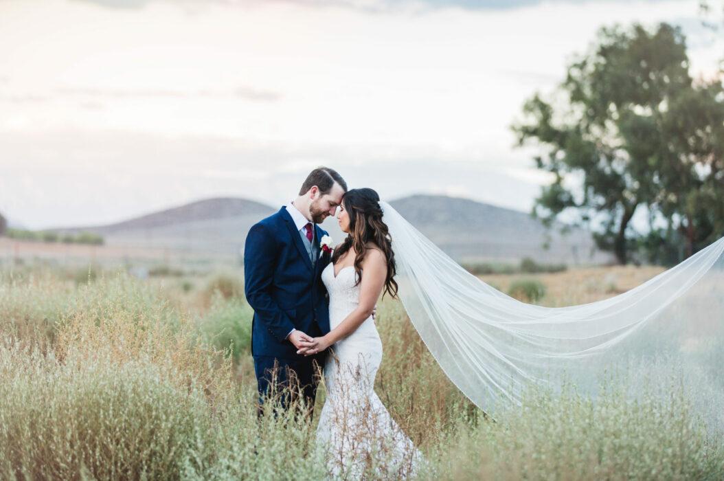 Bride and Groom, Blue groom suit, Wedding vail